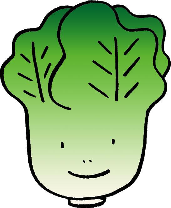 生の白菜の食べ過ぎで甲状腺障害!!??