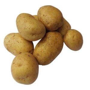 学校菜園でのジャガイモ中毒